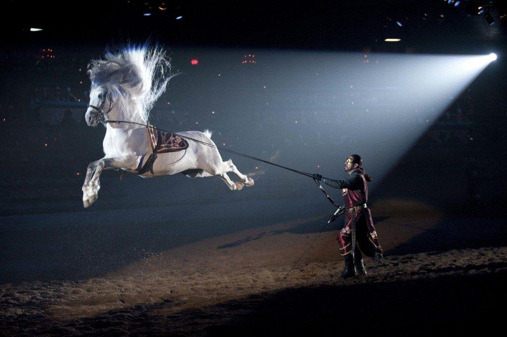 Cavalo Medieval